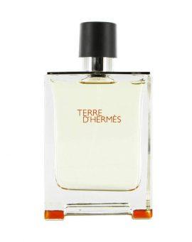 Hermes Terre D Hermes EDT Man (Tester) - 100 ML