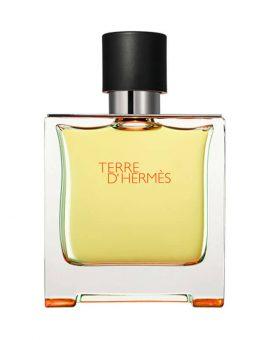 Hermes Terre D Hermes Man (Tester) - 75 ML