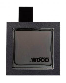 Dsquared2 He Wood Silver Wind Wood Man - 100 ML