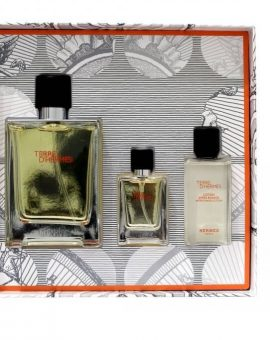 Hermes Terre d Hermes Man (Gift Set) - 100 ML