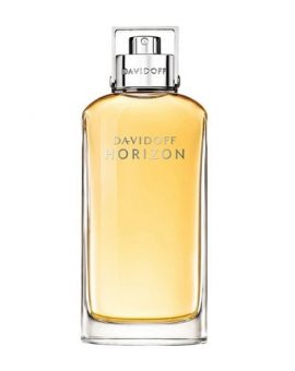 Davidoff Horizon Man (Tester) - 125 ML