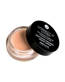 Absolute New York Correct N Cover Dark Circle Concealer - ADCC01 Fair